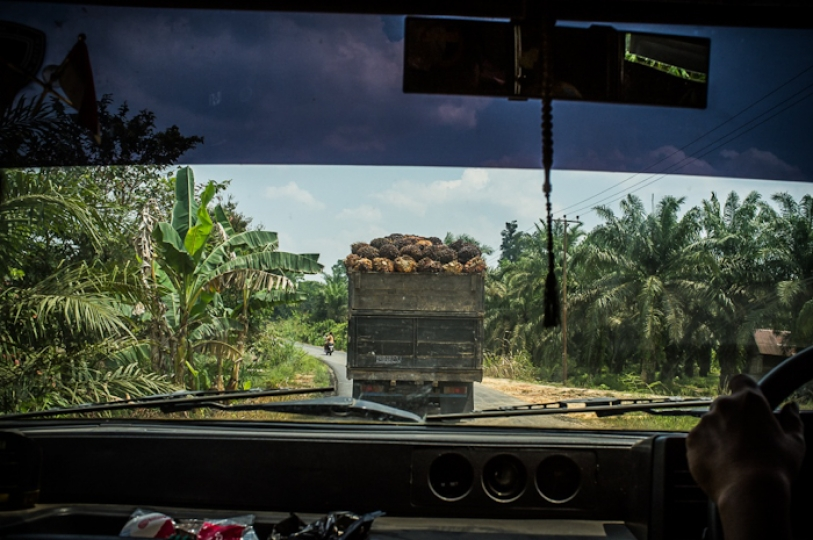 Palm oil transportation in Jambi Province, Indonesia. September 2013 © Alessandro Rota