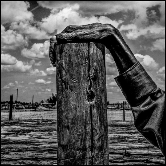 USA. Allensworth, California. 2014. Fence post. Allensworth has a population of 471 and 54% live below the poverty level. © Matt Blackn