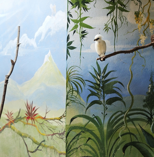 © Eric Pillot, Bali Starling and Mountain, 2012, Courtesy of Galerie Dumonteil, Shanghai, Paris, New York