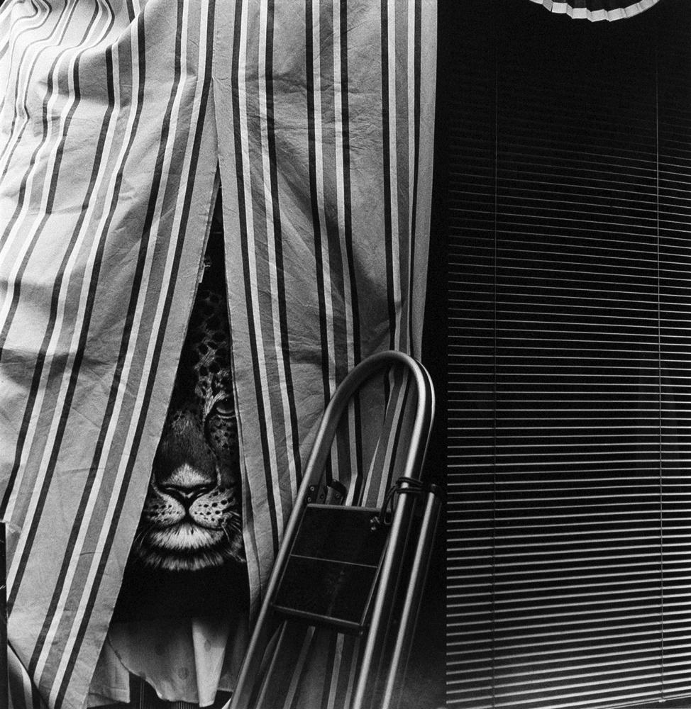 Asako Narhashi- Untitled from Nu-e, 1995