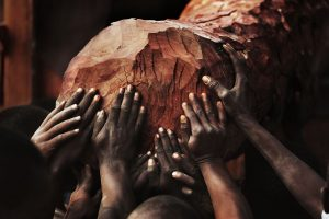 Lu Guang's blood wood: photographs of exploited African forest