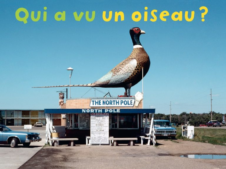 Qui a vu: A collection of ingenious photobooks for children