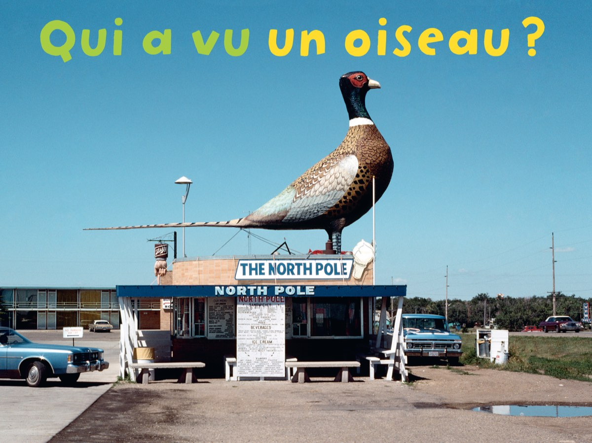 Qui a vu a collection of ingenious photobooks for children the eye of photography magazine - Oiseau qui a la cote ...