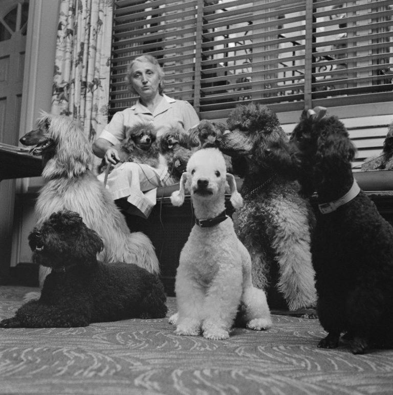 Stanley Kubrick photographe, le monde à travers un autre objectif