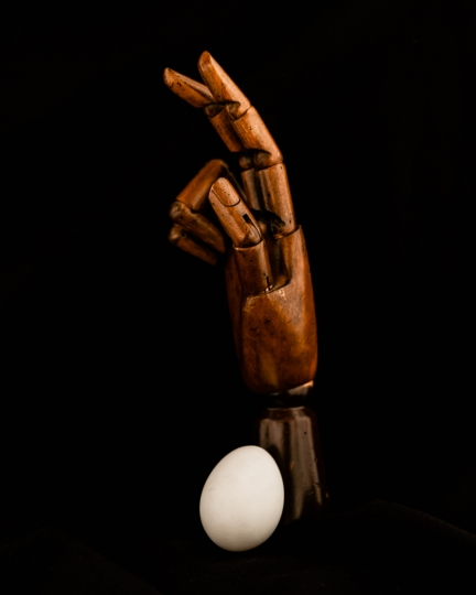 Egg & Wood Hand © Cosimo Cella