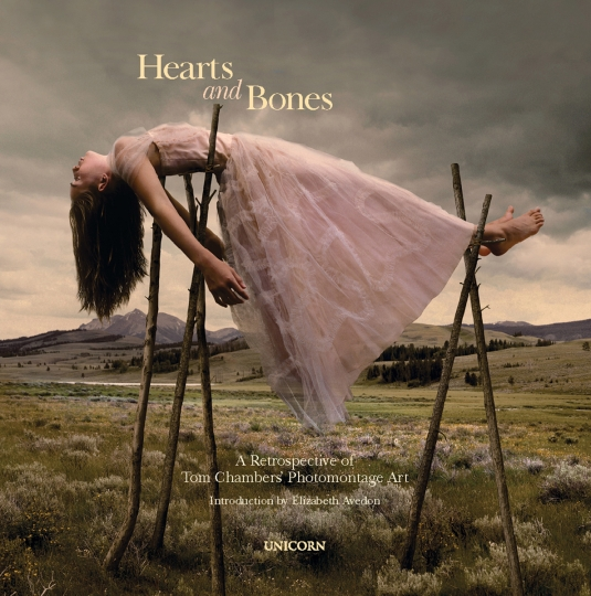 Hearts and Bones © Tom Chambers