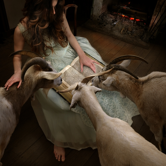 The Goatherd - Hearts and Bones © Tom Chambers