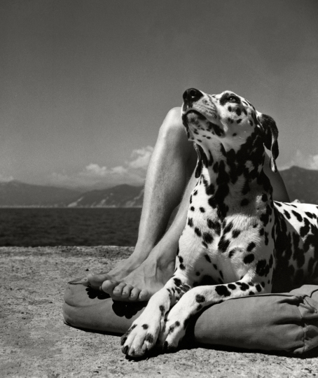 Herbert List, Herr und Hund, Portofino, 1936 © Herbert List Estate, Hamburg / Courtesy: Johanna Breede PHOTOKUNST