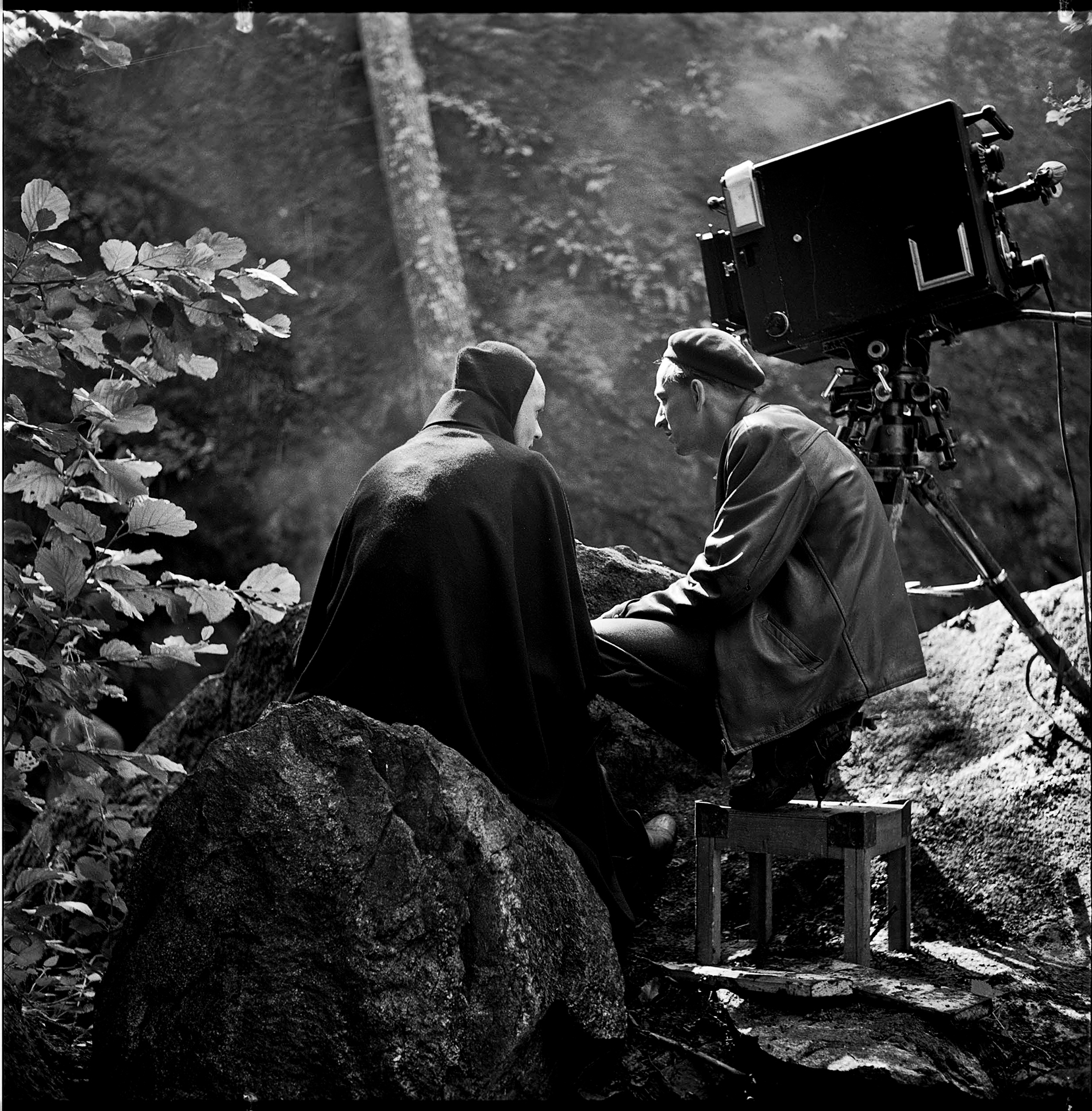 Bergman A Year in a Life by Jane Magnusson © Svensk Filmindustri