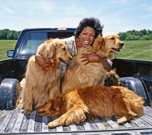 Oprah Winfrey and her favorite Dogs 1994 © Harry Benson