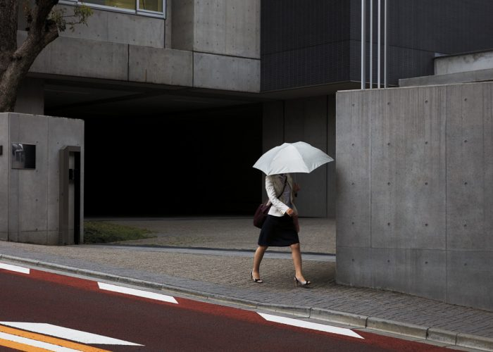 Roberto Badin - Inside Japan