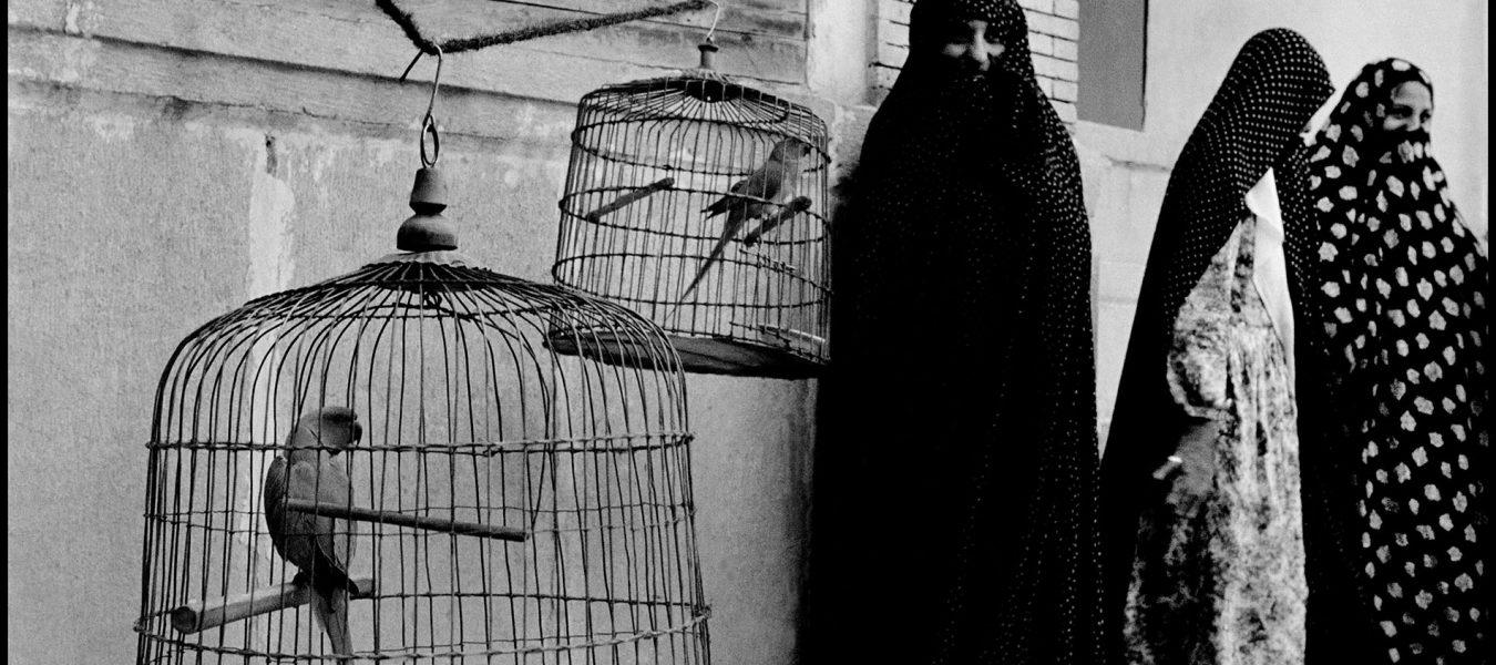 Inge Morath: A  Woman in Iran, 1956