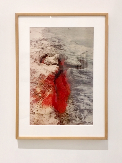 55. Ana Mendieta's Silueta Works in Mexico, 1973, de la Cruz Collection