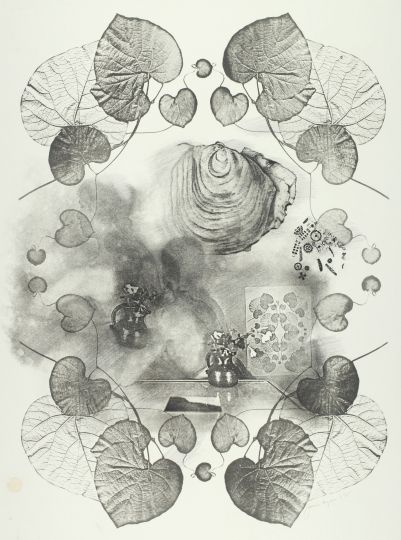 Joan Lyons Untitled (from the Dreamer series), 1974 Haloid Xerox transfer and lithograph 26h x 19w in Unique, Signed by artist verso - Courtesy Steven Kasher Gallery