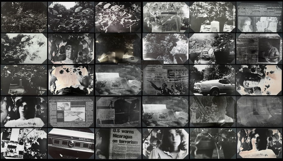 Joan Lyons Notes from the Backyard, 1984 Composite of 30 direct positive silver gelatin prints from unique pinhole images 12 x 18 inches each, 108 x 60 inches overall Unique, Signed by artist verso - Courtesy Steven Kasher Gallery