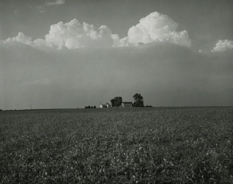 Rhondal McKinney: Midwest Horizons