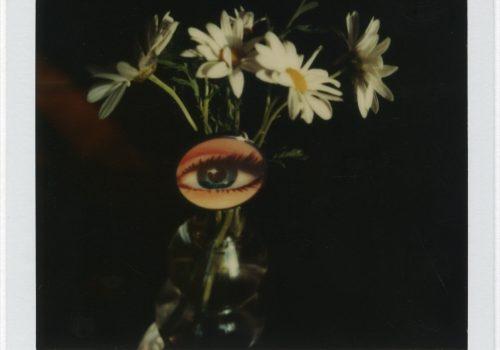 André Kertész et Arne Svenson: À ma fenêtre