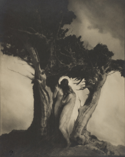 Heart of the Storm, negative circa 1912, gelatin silver print, 9 1/2 x 7 5/8 inches. Wilson Centre for Photography