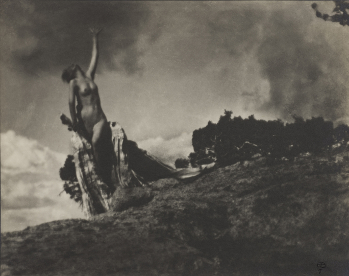 Soul of the Blasted Pine, negative 1906, gelatin silver print, 7 11/16 x 9 5/8 inches. Wilson Centre for Photography