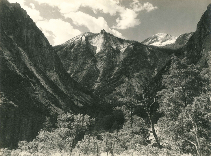 Ansel Adams, Lower Paradise Valley, c.1927 Vintage parmelian print 5.75 x 8 inches - Copyright The Ansel Adams Publishing Rights Trust