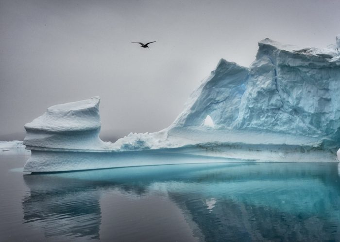 Philippe Alexandre Chevallier - Ice Memories