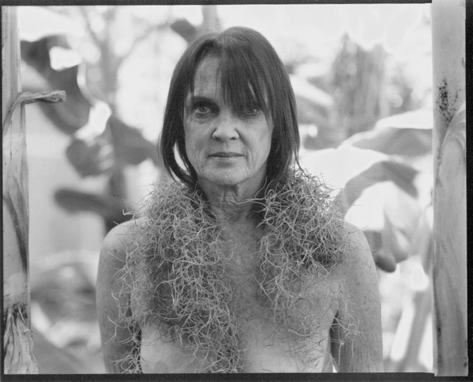 Self-Portrait, Moss, New Orleans, 2015 (chosen to open May 8, 2019 Julia Margaret Cameron Exhibition, Barcelona)