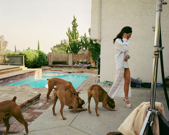 Boxers, Mission Hills 1999 © Larry Sultan - Courtesy of the Estate of Larry Sultan and Yancey Richardson