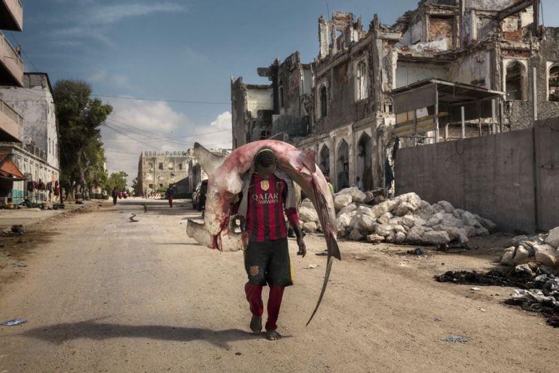 Africa, Somalia, Mogadishu. 10/10/2015. A man carries a shark through the streets of Mogadishu. A recent escalation of plunders of Somali waters by foreign fishing vessels could mean the return of hijackings, locals warn. The country's waters have been exploited by illegal fisheries and the economic infrastructure that once provided jobs has been ravaged. Somalia, Mogadiscio, 2015 ©Marco Gualazzini / Contrasto