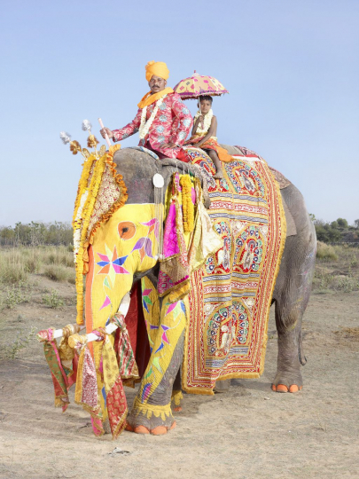 From the Painted elephants series, India, 2013; photo by Charles Fréger