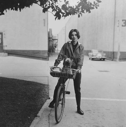 Sid Avery - Audrey Hepburn on her bike with her dog