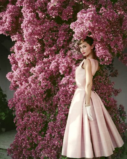 Norman Parkinson - Audrey Hepburn with Flowers II, Italy 1955 © Estate of Norman Parkinson/ Iconic Images, Courtesy of Peter Fetterman Gallery