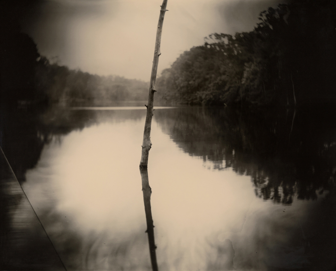 Sally Mann, (American, born 1951) Deep South, Untitled (Stick), 1998 gelatin silver print, printed 1999 New Orleans Museum of Art, Collection of H. Russell Albright, M.D. © Sally Mann