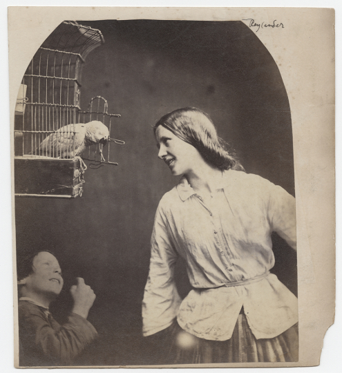 Oscar Gustave Rejlander (British, born Sweden, 1813 - 1875) Enchanted by a Parrot, about 1860 - William T. Hillman Collection - Courtesy Hans P. Kraus, Jr., New York