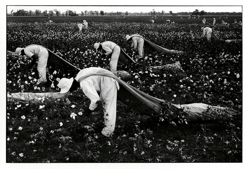 Cotton Pickers, Texas Prison, 1968 © Danny Lyon/Magnum Photos, courtesy Etherton Gallery, Tucson, AZ.