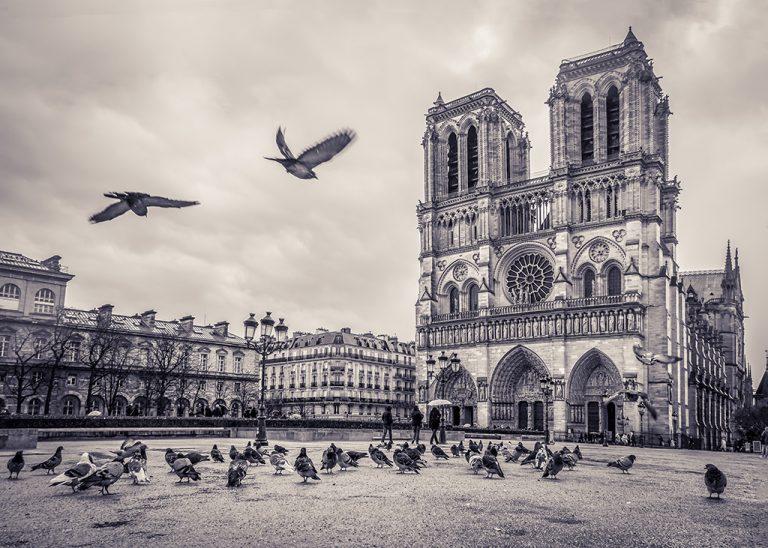 Notre-Dame de Paris – Noir & Blanc