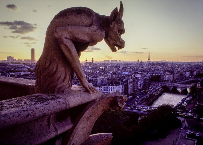 Notre-Dame de Paris – From the top