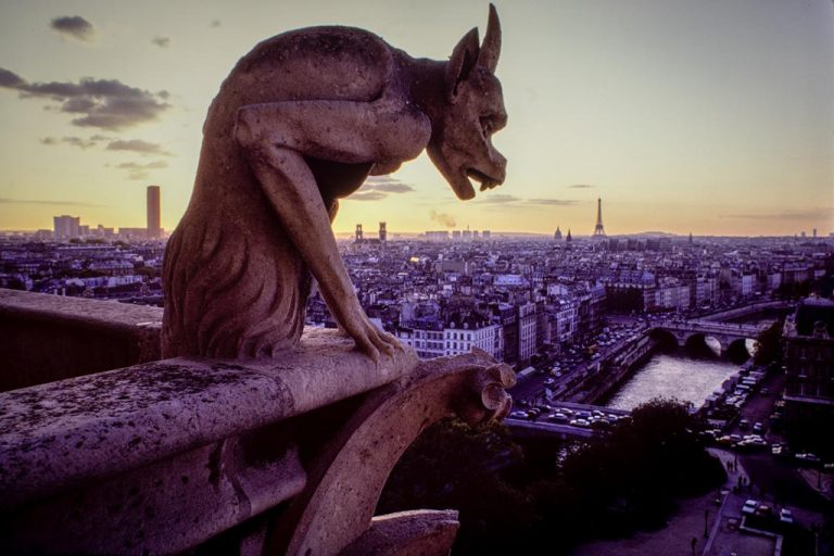 Notre-Dame de Paris – From the top