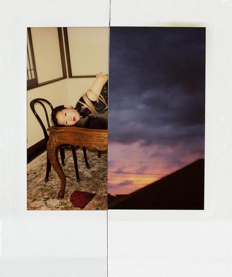 Nobuyoshi Araki : Polarnography