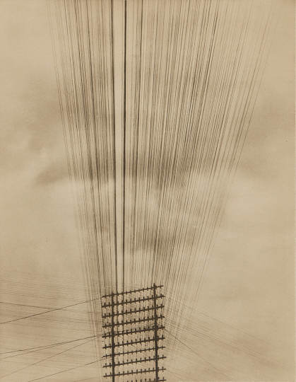 Tina Modotti, Telephone Wires, Mexico, 1925 Palladium print. 9 1/2 x 7 1/2 in. (24.1 x 19.1 cm) Signed and dated in pencil on the mount. Image courtesy of Phillips. Estimate: $250,000-350,000 SOLD FOR $692,000