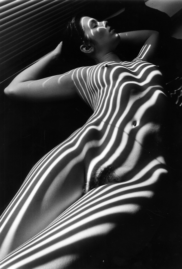 Lucien Clergue Nu Zebre 1998 Gelatin silver print 15 3/4 x 11 1/4 in. 16/30 PF Signed in ink on recto and verso © Lucien Clergue – Courtesy Throckmorton Fine Art