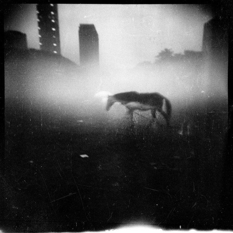 Michael Ackerman - Watermark