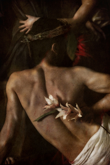 Ottavio Marino : Francesco di Paola