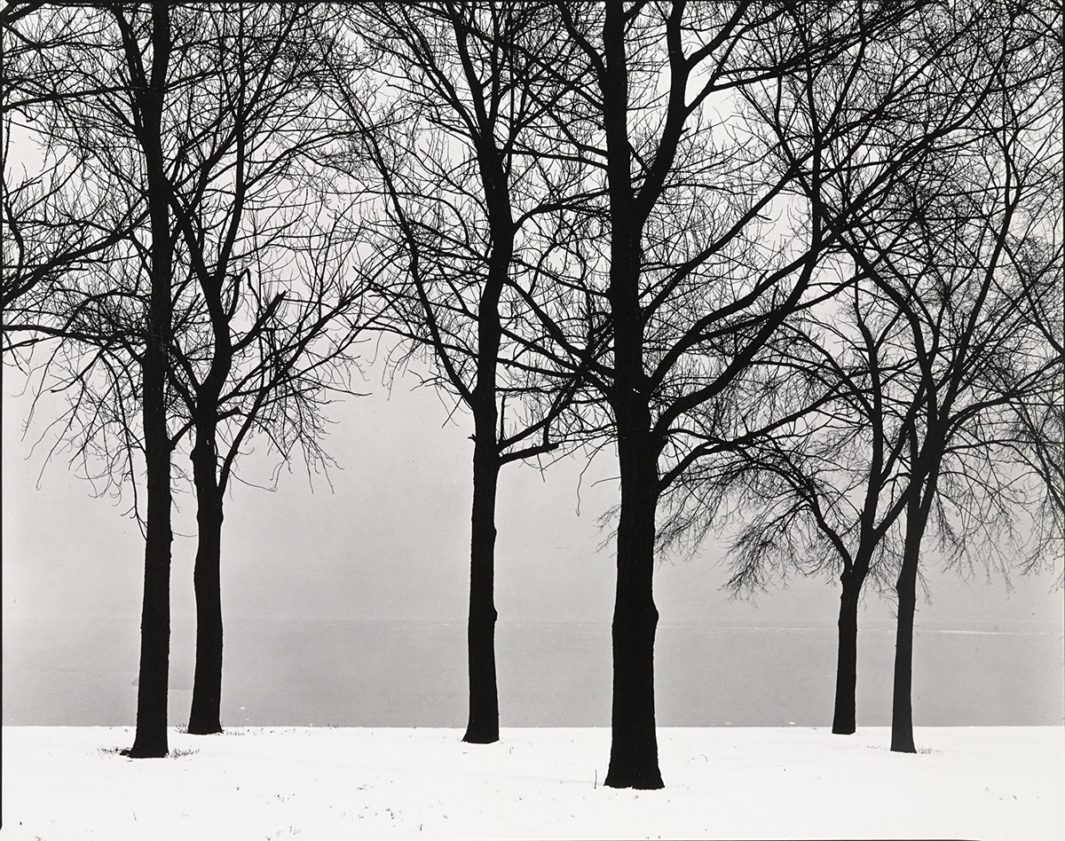 In the French archives, Harry Callahan pursues his