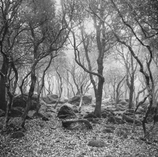 Exposition photo Terra incognita, la Sardaigne à travers le regard de Luca Spano