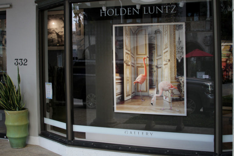 Holden Luntz : Rooms that Resonate with Possibilities