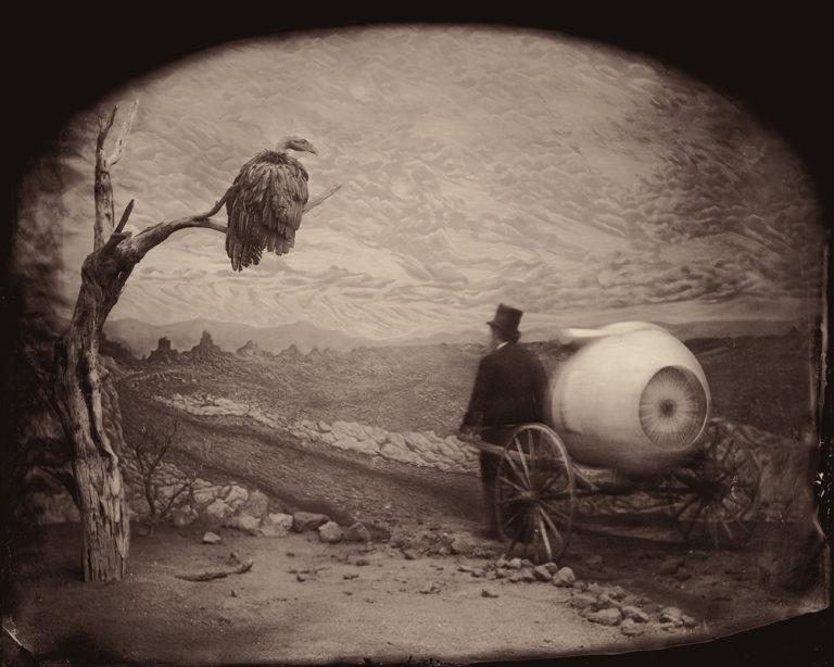 Stephen Berkman : Predicting the Past, Zohar Studios : Opticus Naturalis